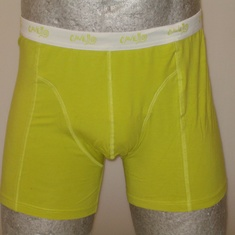boxer cavello lime